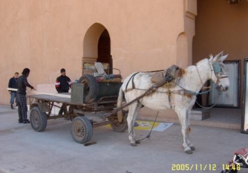 Opbouw marrakech
